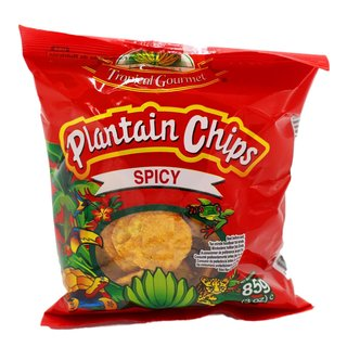 Tropical Gourmet Plantain Bananen Chips spicy 10x85g